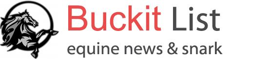 Buckit List Website Logo