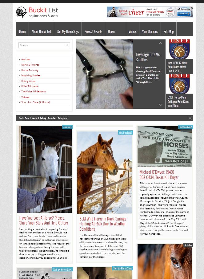 Website Design, Horse Buckit List, Equine Stories